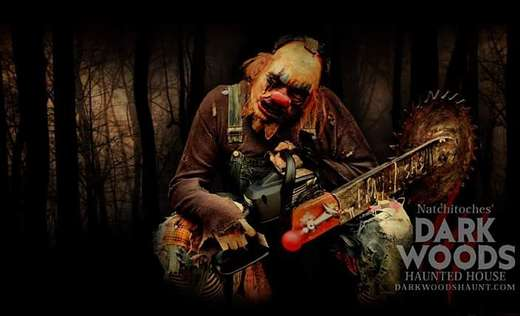 Dark Woods Haunted House Scream Park