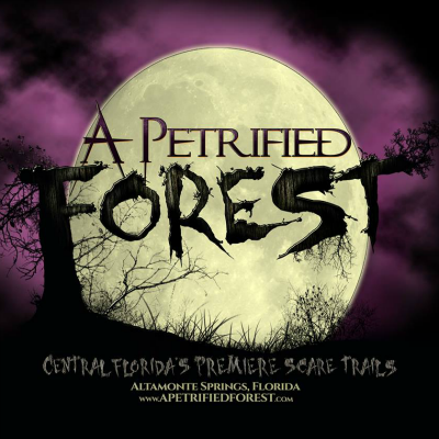 A Petrified Forest review