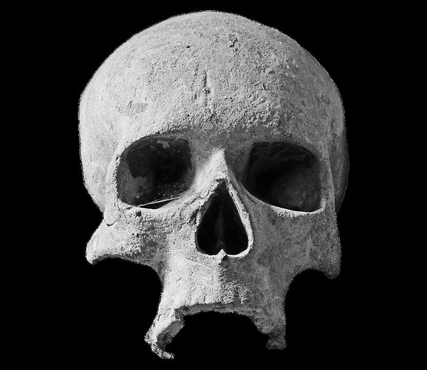 Mini Haunt Skull